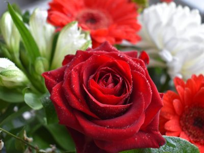 Valentijn Corona